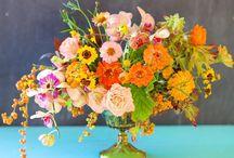 Flowers and plants / Flowers, nature, colorful, 4 seasons, centerpiece, decoration