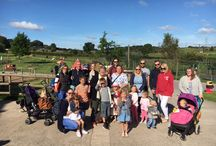 September 2016 - Awdry Bailey & Douglas Day out to Noah's Ark Farm Zoo 2016 / Animals
