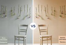 ¿Qué color prefieres? / Dos colores, dos opciones. ¿Cuál eliges?