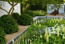 Luciano Giubbilei / London, UK, Garden designer - gardens characterised by simple and clean symmetrical design using nature, space and art.