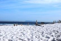 Pringle Bay