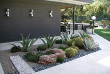 Tuin ideeën en planten