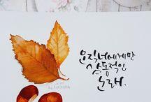 수채화 캘리그라피 / watercolor calligraphy