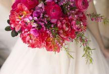 Wedding ONE DAY ♥