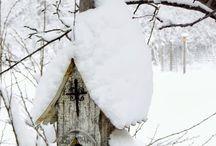 Kış yuvası kuşlara / Winter time