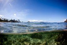 Underwater... / Underwater Photography in Maui Hawaii