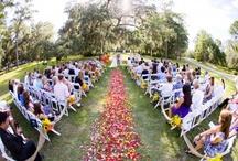 My Baby Girl's Wedding / by Krissy Smith