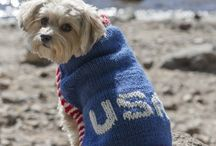 "Knitting - Dogs & Cats / Knitting for Dogs & Cats (all sizes) knitting patterns (some retail). I am a Knitting Addict, other ""addicts"" connect me (Friend me) @ www.facebook.com/profile.php?id=100002455722545. I have over 20 separate boards devoted to knitting; check them all out. / by Nancy Thomas"