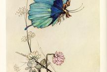 Fairies / by Margaret Madill