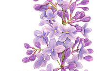 Lilac Flowers and Tattoos