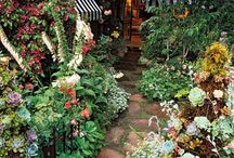 13b - Gardens / by Janet Clarke