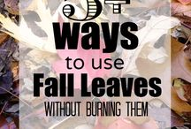 Sustainable DIY Fall Projects