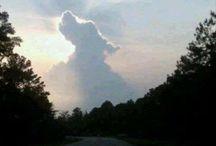 God creates Dog…mans bestfriend