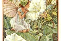 in my garden / Fate dei fiori - flower fairies