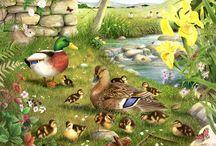 Téma: Zvířata u vody a na louce