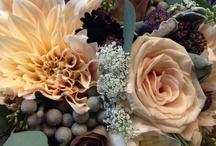 Florals Final / wedding flowers / consultation  / by Susan Burroughs