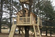 {{Tree House Dream}}