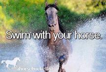 Horse Bucket List ❤ / one day everything here will happem for all the horse lovers, including me