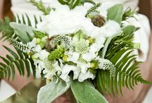 Fern Inspired / by Shannon Leahy Events