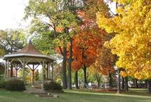 Fall - Assembly Park