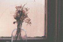 Cửa sổ