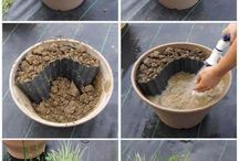 Ponds/ water in containers / For small gardens a small water feature