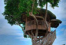 Treehouses, zo gaaf!