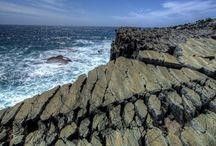 Mistaken point Newfoundland
