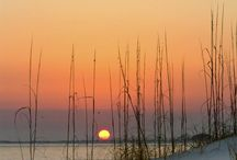Gulf Coast Living