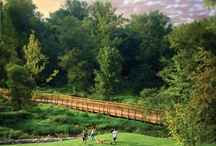 Briar Chapel / Briar Chapel, our award-winning sister community, is the Triangle's largest green community. Located in Chapel Hill, NC.