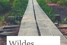 Eastern Europe - Travel Destination / Eastern Europe travel tips: roadtrips, wildlife spots, national parks and fascinating nature / Osteuropa Reise Tipps rund um Roadtrips, Tiere, Nationalparks und Natur