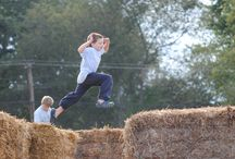 Fall Harevst Festival / Pumpkins Galore, Corn Maze, Hayrides, Animals and endless old-fashioned family fun.