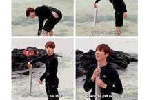~BTS~ funny