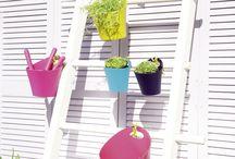 Boites et objets design / Des suggestions pour un rangement décoratif