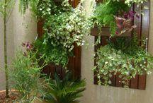 Jardins pequenos