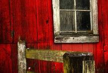 Dream Home / by Joy Lohse
