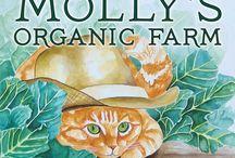 Mollys Organic Farm