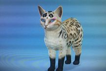 Warrior Cats (Sims 4)
