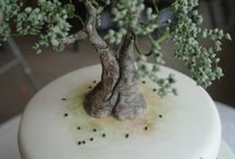 Cakes: Trees