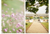 Gaynes Park  Wedding Photography /  Wedding Photography at Gaynes Park, Wedding at Gaynes Park