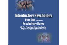 Piaget & Vygotsky / Theorists