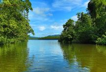 Daintree River Queensland Australia / Daintree River is 120kms long flowing north through the  World Heritage listed rainforest region before completing its horse-shoe shaped path to the Coral Sea