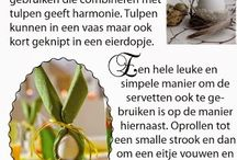 www.Elleska.blogspot.nl / foodblog by Elleska