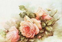 Rosas rose