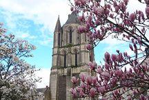 Angers / la ville d'Angers