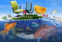Krzesła na urlopie / Afryka, pustynia i rajska wyspa