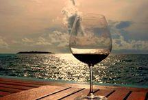 Vinhos que bebi...