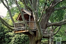 Tree house for the boys