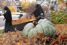 Halloween...Trick or Treat 2 / by Jana Alexander