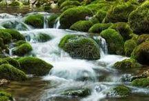 Şelale Süsleme, Şelale Yapımı, İlham Kaynağımız Doğa, waterfall Decor /  Doğanın hediyesi bu şelaleler... Gerçek dünyada binlerce yıldır çağlamakta... Hiç dinlenmeden...  Bunun üstüne kim, sanatkarım diyebilir... Yaratandan başka..    Şelale süsleme duvar resimleri ile de mümkündür. Yarı resim, yarı yapay şelale de uygulanabilir. Şelale yapım çok lüks bir dekor olmasına rağmen, bakımına özen gösterilmemekte, ülkemizde. Bizim uygulamalarımızdan olan şelalere traverten ekleme yöntemi ile bakım ve temizlikte yol katedilmiştir. Şelaleyi travertene çevirme yöntemi var.